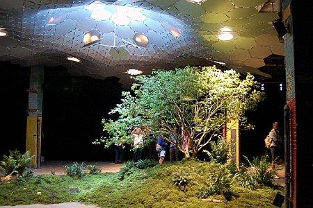 The World's First Underground Park